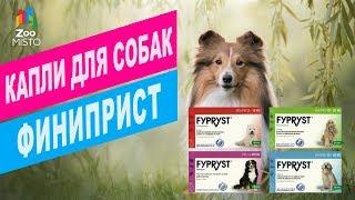 Фиприст капли от блох для собак | Обзор фиприст капли от блох для собак