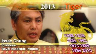 2013 Chinese new year predictions for 12 animals - tiger