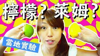 """【當地實驗】台灣人怎麼分辨 """"檸檬"""" 或 """"萊姆""""!? in 台中(How to distinguish LEMON or LIME in TAIWAN...!?)"""