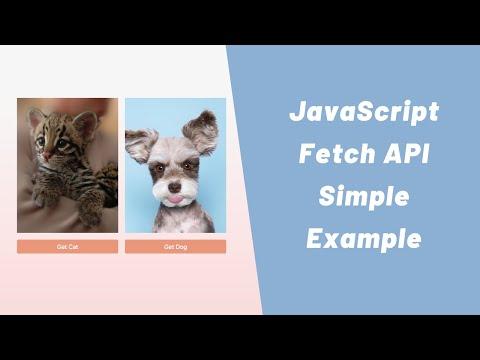 JavaScript Fetch API - Simple Example