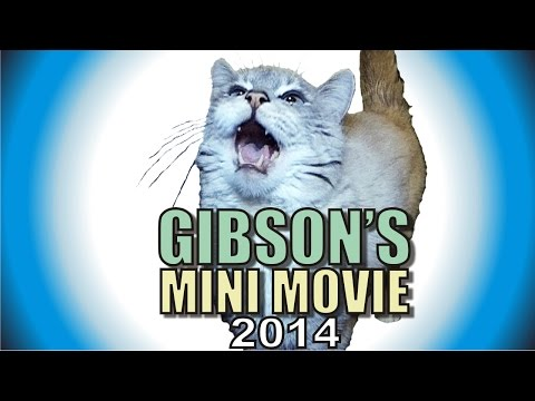 Thumbnail: Gibson's Mini Movie - 2014