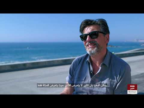 سينما بديلة: لقاء مع ماريو ميكايلو حول فيلم -Vila do Conde Festival - Blood Brothers-  - 11:55-2018 / 12 / 12