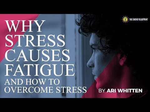 How Stress Causes Fatigue (Hint: It's not just your adrenals) and How to Fix It