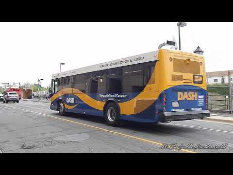 WMATA Metrobus & Alexandria DASH: Bus Observations (April 2019) -- Part 3/3 [#W031]