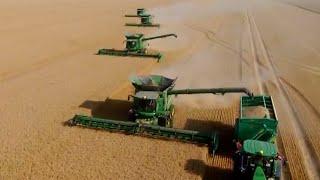 Harvest GIANTS / 4 John Deere S 690 I Combine Havester  / 2 John Deere 8 R / Ernte 2017