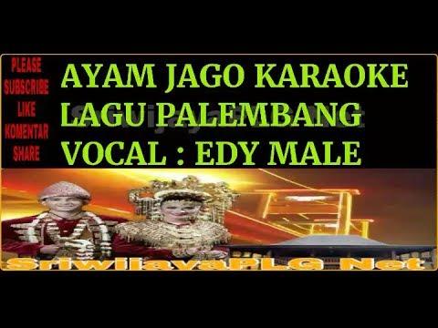 AYAM JAGO LAGU PALEMBANG KARAOKE NO VOCAL