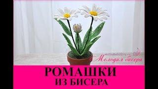 Ромашки из бисера. Мастер-класс / Chamomile flowers from bead handmade