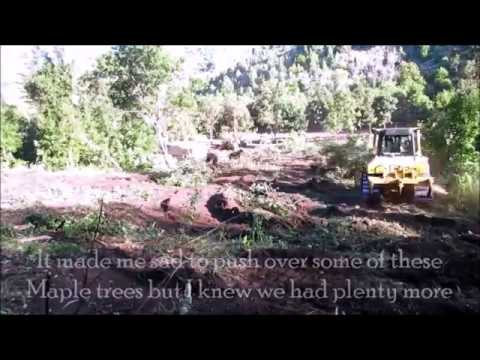 Clearing Raw Land With Bull Dozer For Our Homestead