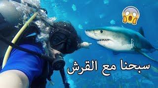 الغوص مع سمك القرش ! أخطر مغامرة بحياتي | THE CRAZIEST ADVENTURE OF MY LIFE