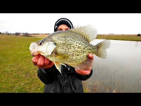 Catching MONSTER Crappie From A Hidden Pond!!!