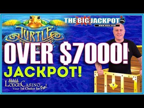 🐢 OVER $7000 JACKPOT ON TURTLE TREASURE 🐢 - BONUS WIN ON BLACK WIDOW