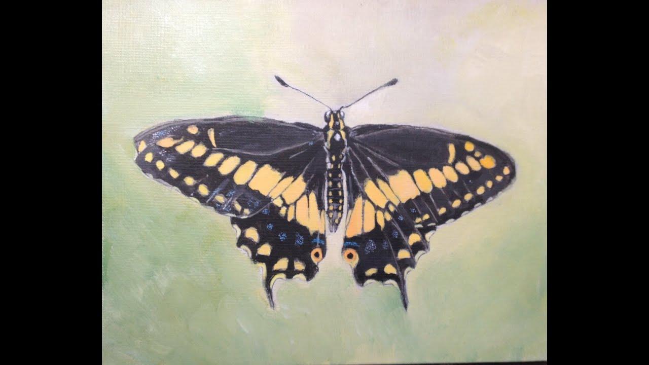 Peindre un papillon - Modele papillon ...