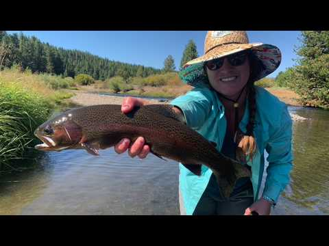Fly Fishing Truckee California