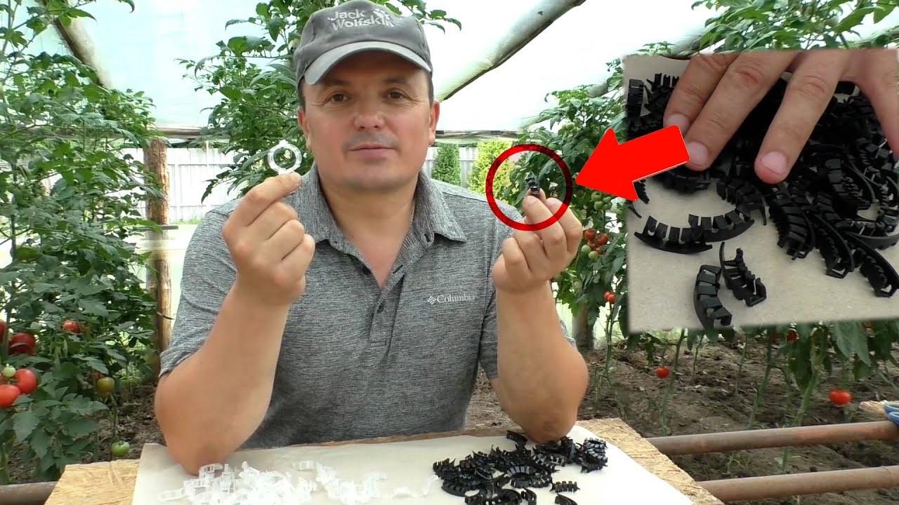 Кистедержатели для томатов- зачем они нужны и чем полезны.