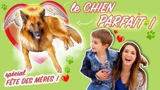 HUGO offre le chien PARFAIT à sa maman😮 - Angie la crazy série
