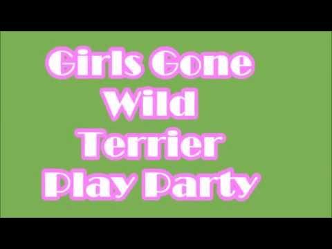 GIRLS GONE WILD - WIRE FOX TERRIER & WELSH TERRIER FUN