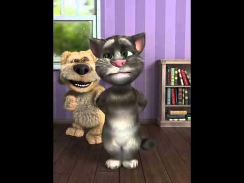 Konusan Kedi Kurtce