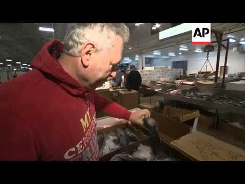 New Fulton Fish Market: Where Trading Is As Fierce And Fast As Wall Street