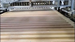 YX300 PECTIN JELLY CANDY PRODUCTION LINE VIDEO FROM OUR CHINESE CUSTOMER