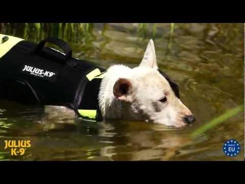 Hundeweste für Training und Rehabilitation im Wasser, Schwimmweste, Kode: 16SWME-S