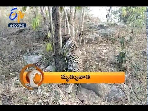 8 PM | ETV 360 | News Headlines | 14th January 2019 | ETV Telangana