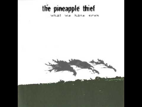 the-pineapple-thief-well-i-think-that-s-what-you-said-abdul-trelles