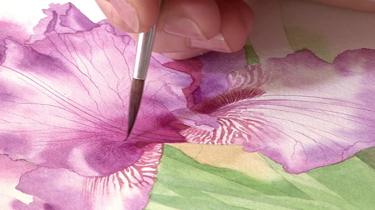 How to paint a purple iris preview billy showell watercolour how to paint a purple iris preview billy showell watercolour beautiful dhlflorist Image collections