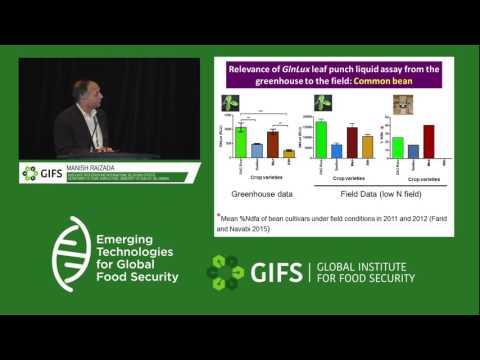 Improvements in Biological Nitrogen Fixation by Manish Raizada