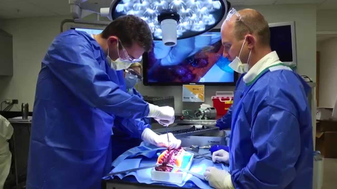 Bildung, Sprachen & Wissen Surgical Procedures Surgeon Surgery Training Course