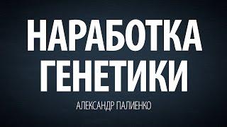 Наработка генетики. Александр Палиенко.