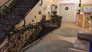 Отель «Норд Стар» в Химках. Старбеево. Видео-обзор.