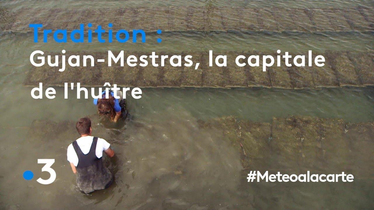 Gujan-Mestras, la capitale de l'huître
