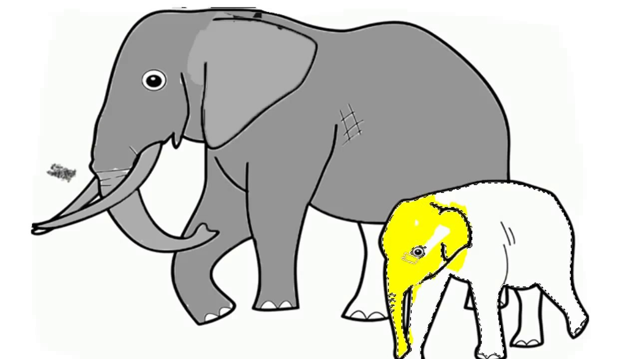 How to Color Elephant| Videos Coloring Pages for Kids - YouTube