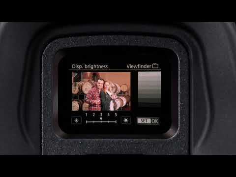 eos-r-quick-tips:-electronic-viewfinder—the-basics