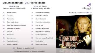 Stefan Hrusca - Florile dalbe (21/23) [Craciunul cu Hrusca]