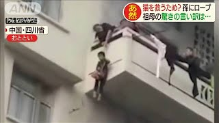 """おばあさん、なんてことを!超危険な""""孫で猫釣り""""(20/01/07)"""