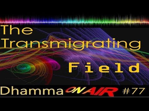 Dhamma on Air #77: The Transmigrating Field
