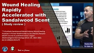 Wound Healing Rapidly Accelerated with Sandalwood Scent