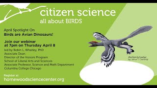 Birds are Avian Dinosaurs / April 8, 2021