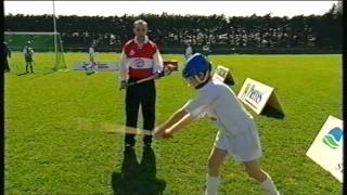 D.J. Carey - Hurling Skills