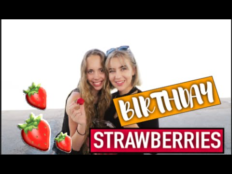 NATIS BIRTHDAY, HUMIDITY AND FREE STRAWBERRIES