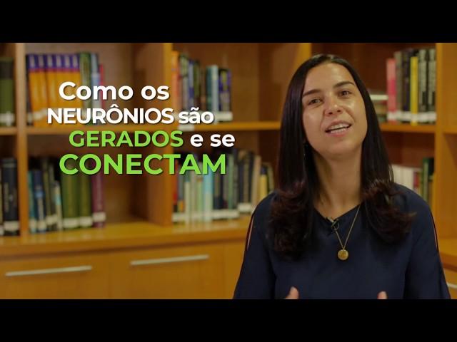 Cérebro, zika e aprendizado  - Patricia Garcez