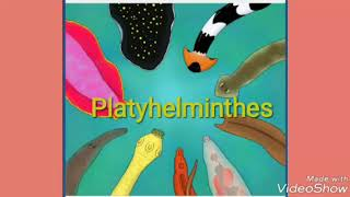 PLATYHELMINTHES ( TREMATODA SUBCLASS) CLASSIFICATION & CHARACTERISTICS