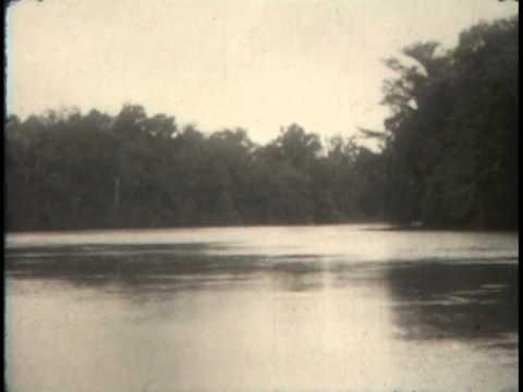 Kid Nichols 1926 Duck Hunt and Swamp Logging