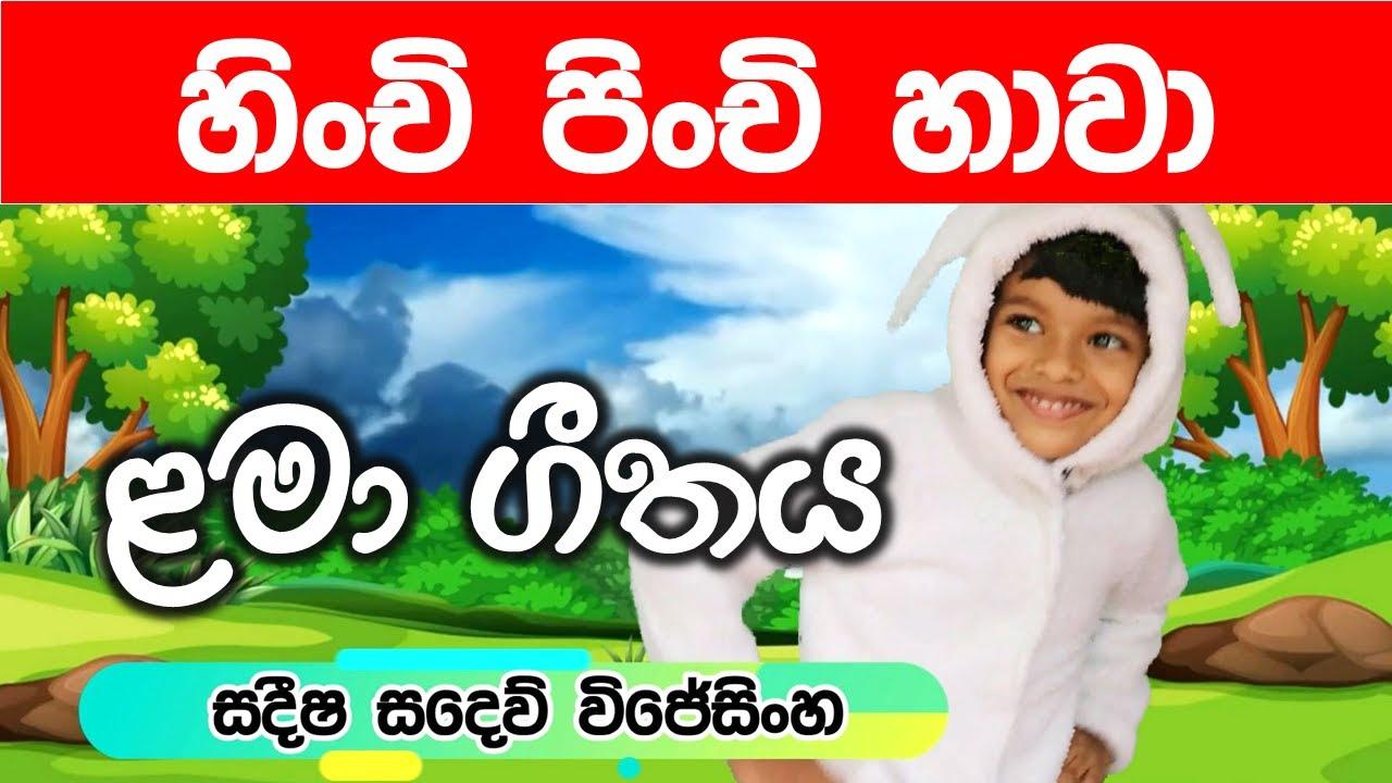 Download Hinchi Pinchi Hawa Sinhala Song හිංචි පිංචි හාවා Lama Sindu