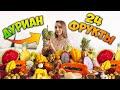 Пробую ФРУКТЫ в ТАИЛАНДЕ, 24 вида, фруктовый рынок в Паттайе