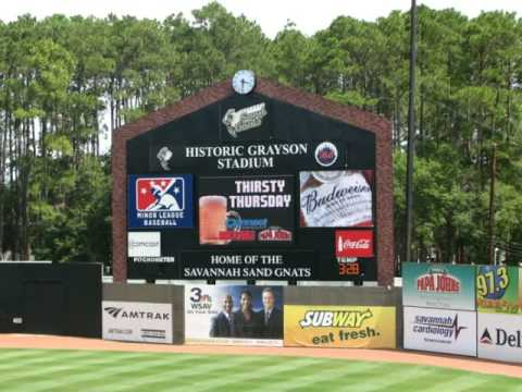 Savannah Sand Gnats Baseball