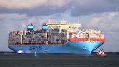 Top 10 Largest Shipping Companies 2016