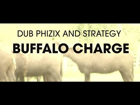 Dub Phizix and Strategy - Buffalo Charge