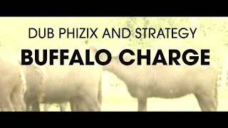 Dub Phizix and Strategy - Buffalo Charge thumbnail